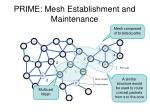 prime mesh establishment and maintenance2