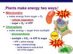 plants make energy two ways
