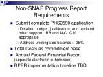 non snap progress report requirements