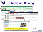 report weekly surveillance data to flunet