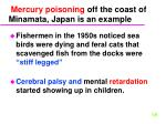 mercury poisoning off the coast of minamata japan is an example