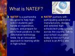 what is natef
