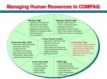 managing human resources in compaq
