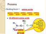 proteins4