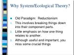 why system ecological theory
