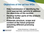 objectives of the ad hoc wgs