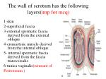 the wall of scrotum has the following layers imp for mcq