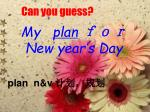my plan new year s day