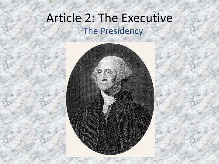 article 2 the executive n.