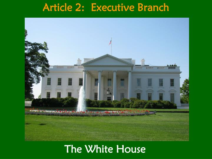 article 2 executive branch n.