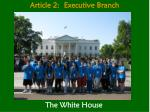 article 2 executive branch1
