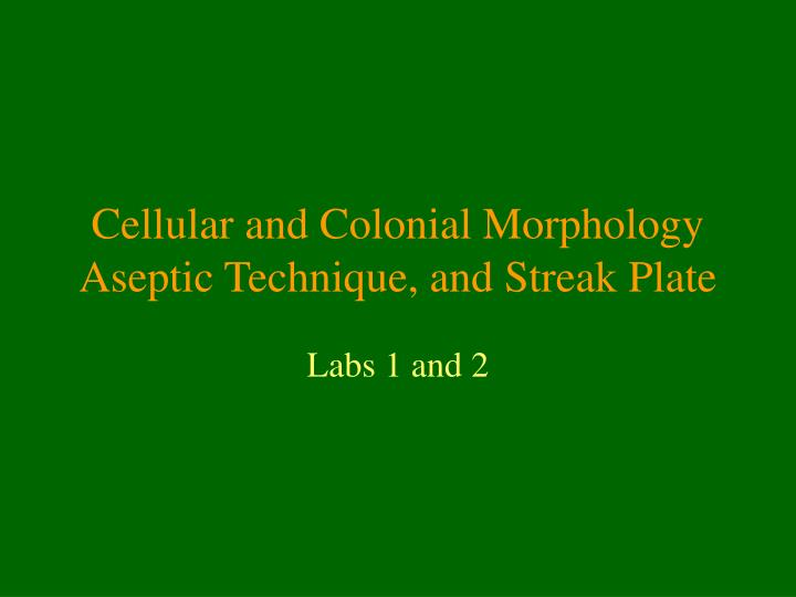 cellular and colonial morphology aseptic technique and streak plate n.