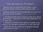 the numeracy problem
