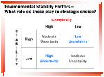 environmental stability factors what role do these play in strategic choice