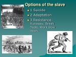 options of the slave