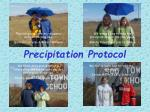 precipitation protocol