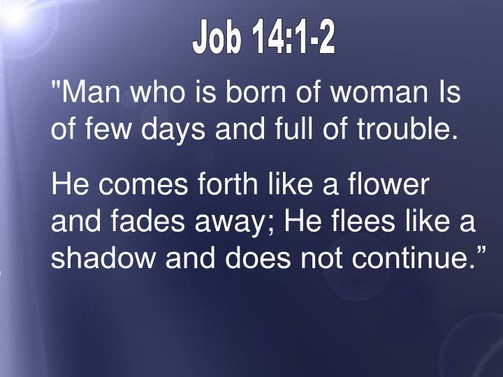 Job 14:1-2