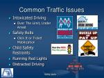 common traffic issues