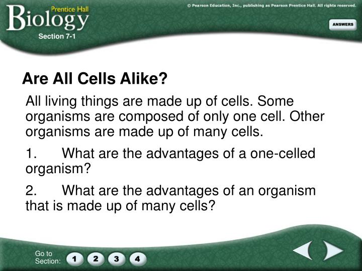 are all cells alike n.