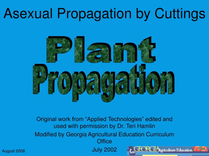 asexual propagation by cuttings n.