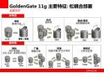 goldengate 11g