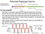 polarized positrons source