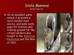 state mammal gray squirrel