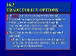 16 3 trade policy options