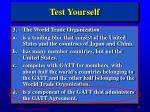 test yourself2