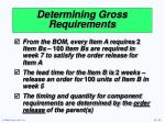 determining gross requirements1