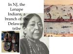 in nj the lenape indians a branch of the delaware tribe