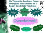 my thoughts feelings fears strengths weaknesses as i began candidate teaching