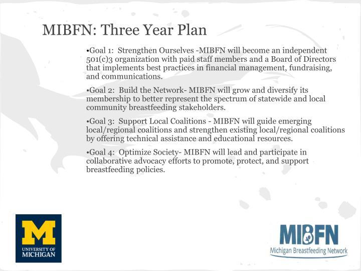 MIBFN: Three Year Plan