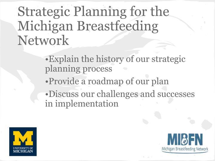 Strategic Planning for the Michigan Breastfeeding Network