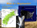 what is a megalopolis