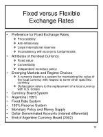 fixed versus flexible exchange rates