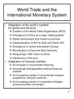 world trade and the international monetary system