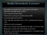 bodily kinesthetic learners