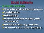 social solidarity1