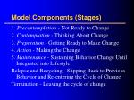 model components stages