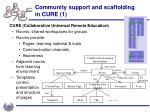 community support and scaffolding in cure 1