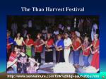 the thao harvest festival1