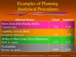 examples of planning analytical procedures
