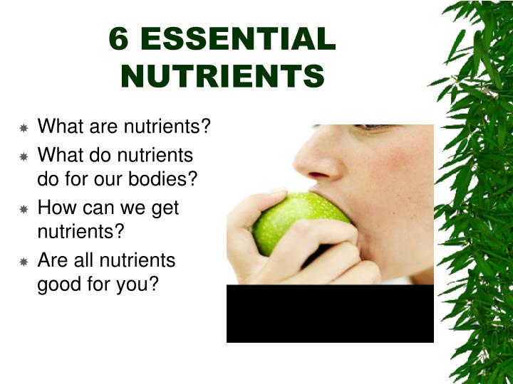 6 essential nutrients n.