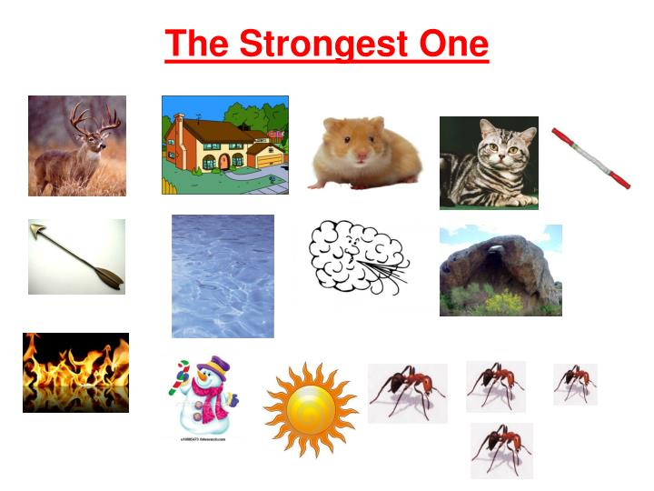 the strongest one n.