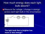 how much energy does each light bulb absorb
