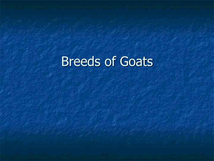breeds of goats n.