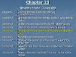 chapter 23 invertebrate diversity1