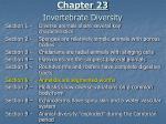 chapter 23 invertebrate diversity2