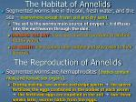 the habitat of annelids